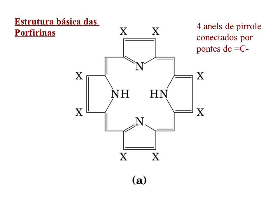 Estrutura básica das Porfirinas 4 anels de pirrole conectados por pontes de =C-