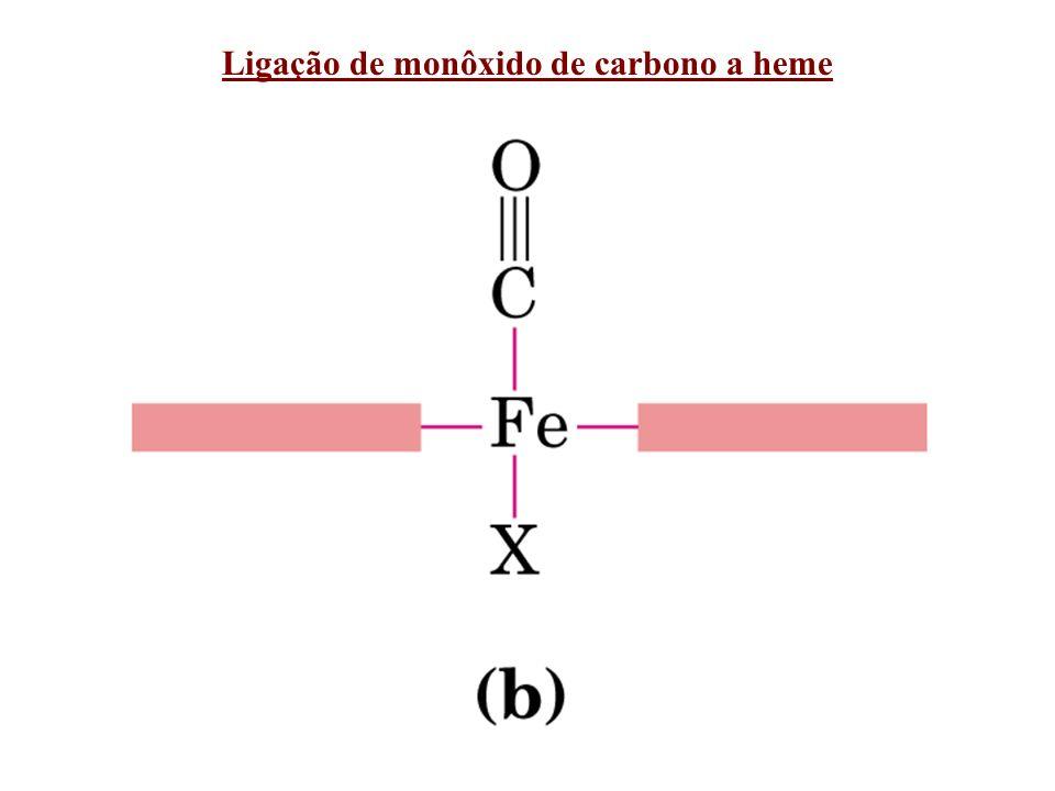 Ligação de monôxido de carbono a heme
