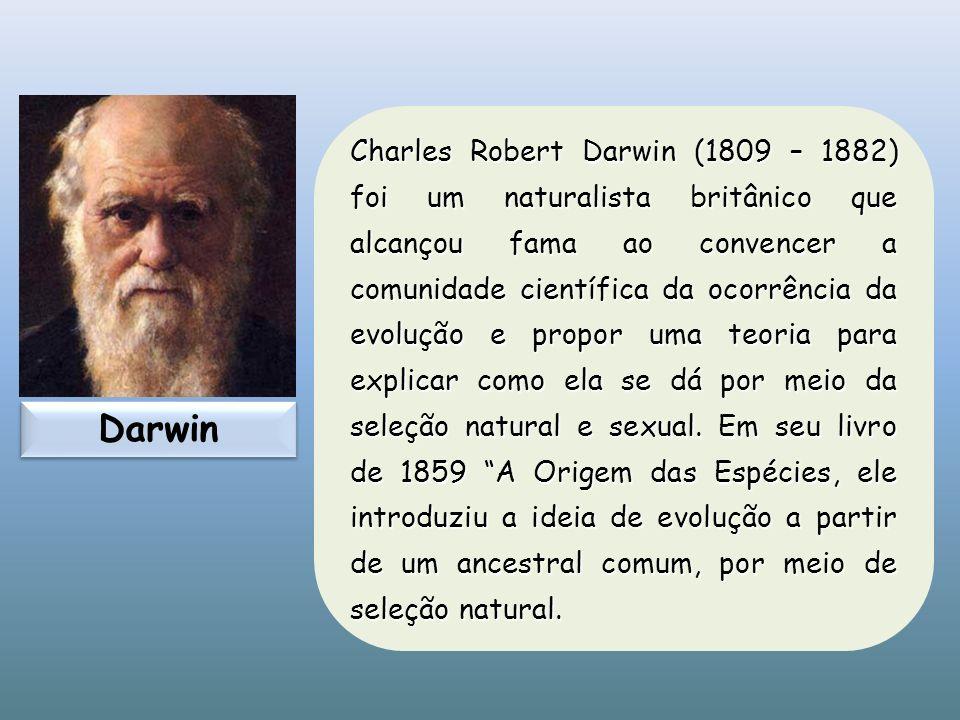 Charles Robert Darwin (1809 – 1882) foi um naturalista britânico que alcançou fama ao convencer a comunidade científica da ocorrência da evolução e pr
