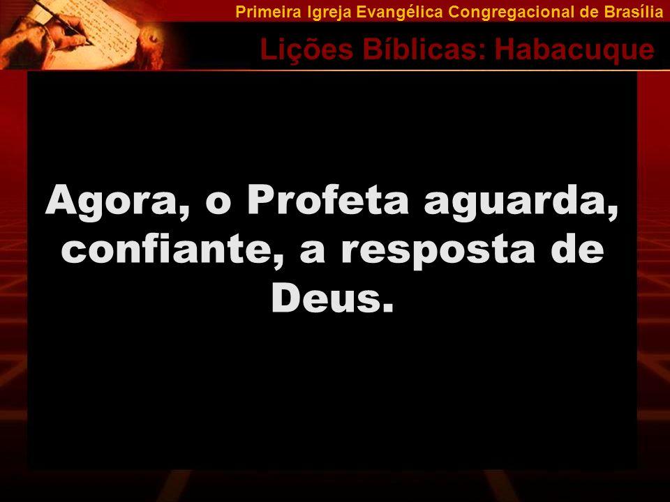 Primeira Igreja Evangélica Congregacional de Brasília Lições Bíblicas: Habacuque Durante a vida, mais cedo ou mais tarde, os problemas virão.