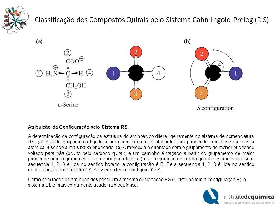 Discriminação dos Enanciômeros por Moléculas Biológicas