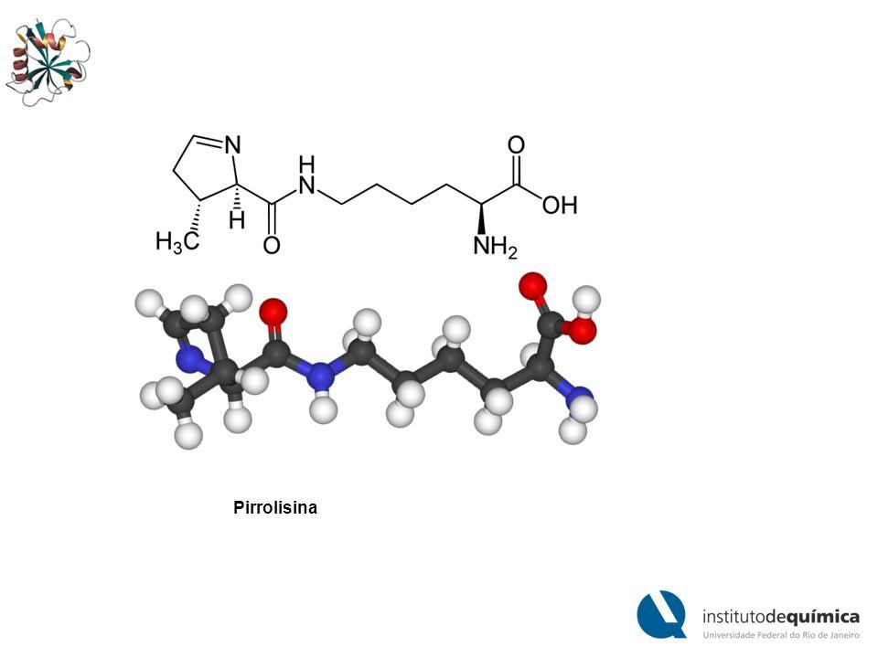 Cotraducional inserção de pirrolisina em resposta a um contexto dependente UAG codon.
