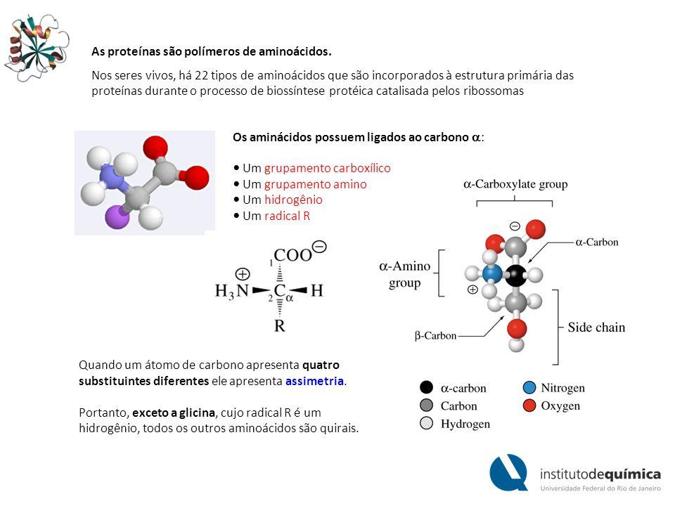Moléculas com carbonos assimétricos podem existir sob diferentes formas isoméricas (estereioisômeros) que apresentam diferentes configurações espaciais.