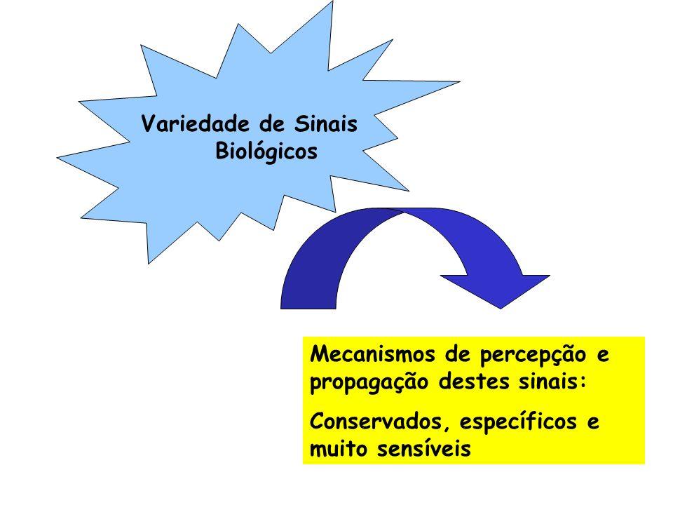 Especificidade e Seletividade Amplificação do Sinal Características dos sistemas de transdução de sinais