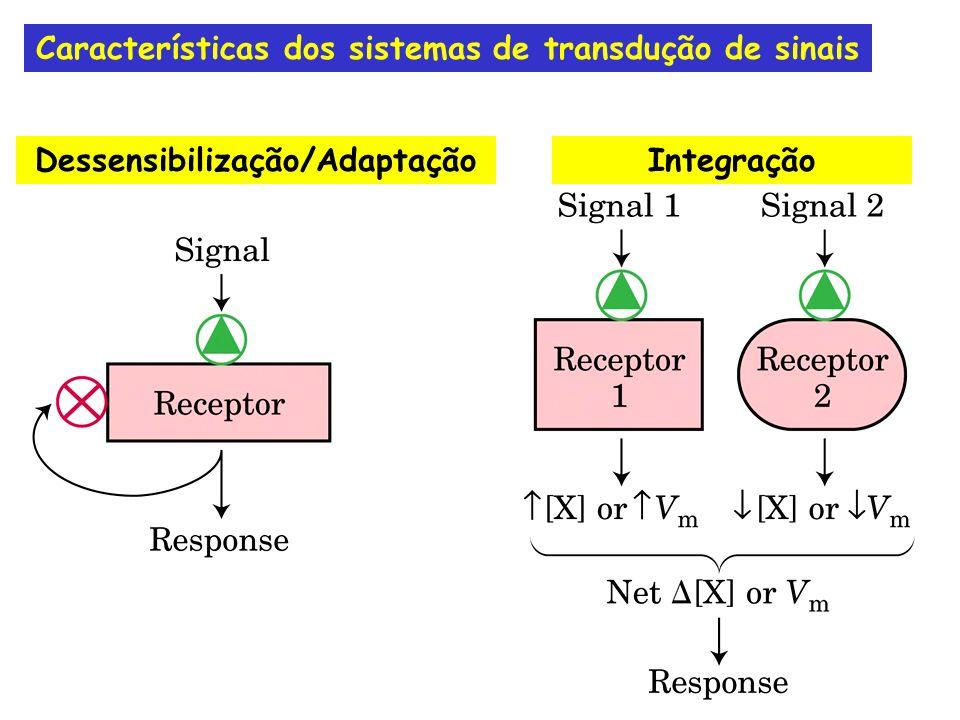 Transmissão da informação do exterior para o interior da célula