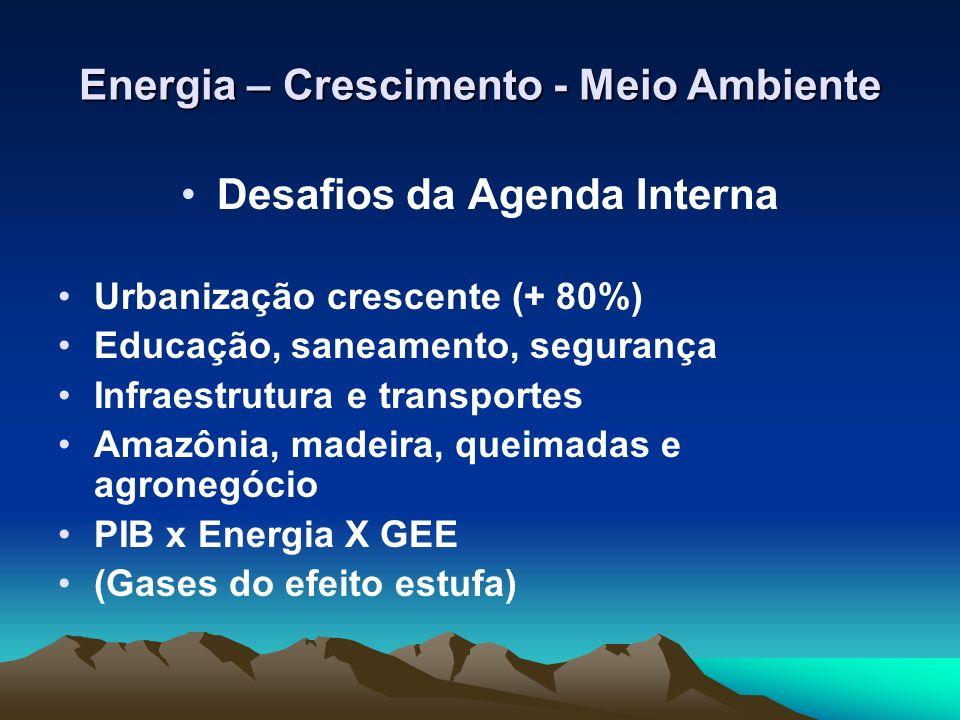 Desafios da Agenda Interna Urbanização crescente (+ 80%) Educação, saneamento, segurança Infraestrutura e transportes Amazônia, madeira, queimadas e a