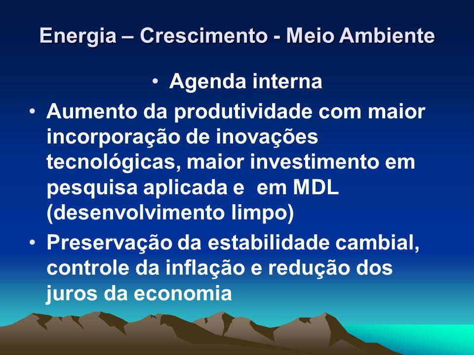 Energia – Crescimento - Meio Ambiente Agenda interna Aumento da produtividade com maior incorporação de inovações tecnológicas, maior investimento em
