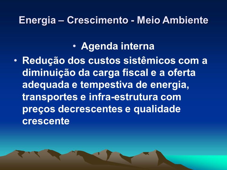 Energia – Crescimento - Meio Ambiente Agenda interna Redução dos custos sistêmicos com a diminuição da carga fiscal e a oferta adequada e tempestiva d
