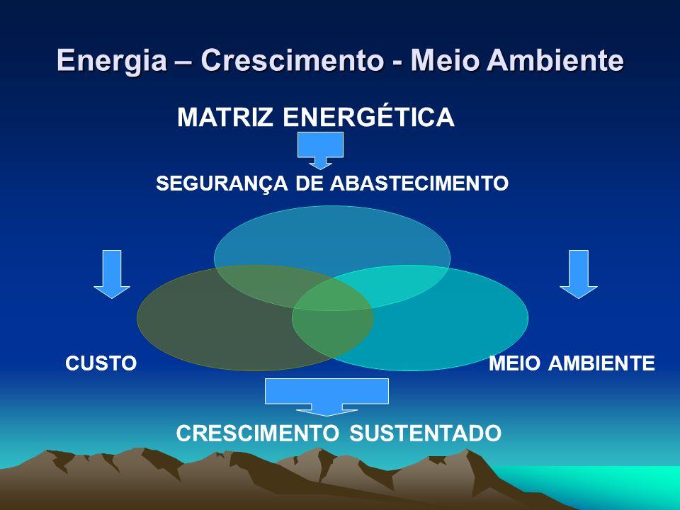 Energia – Crescimento - Meio Ambiente Agenda interna Aumento da produtividade com maior incorporação de inovações tecnológicas, maior investimento em pesquisa aplicada e em MDL (desenvolvimento limpo) Preservação da estabilidade cambial, controle da inflação e redução dos juros da economia