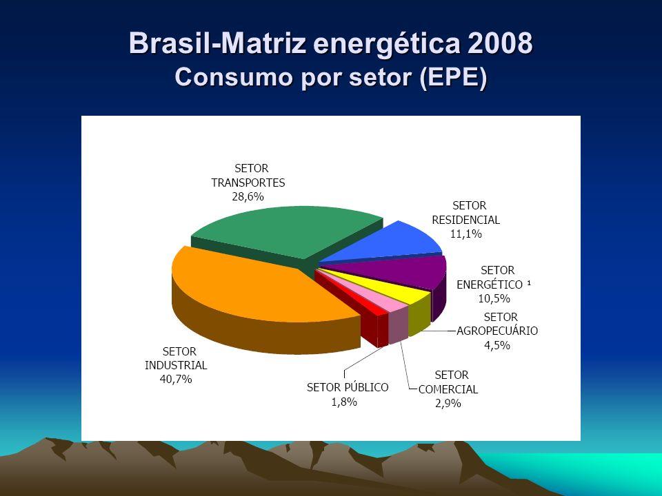 Energia – Crescimento - Meio Ambiente Desafio: Conciliar desenvolvimento econômico e erradicação da miséria com preservação do meio ambiente é o grande desafio de muitos países : Inclusive do Brasil.