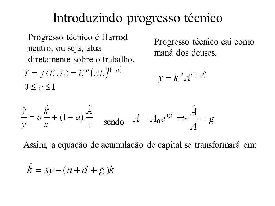 Equação 2 - Acumulação de Capital em que o primeiro termo da equação corresponde à variação contínua no tempo da quantidade de capital, ou a primeira