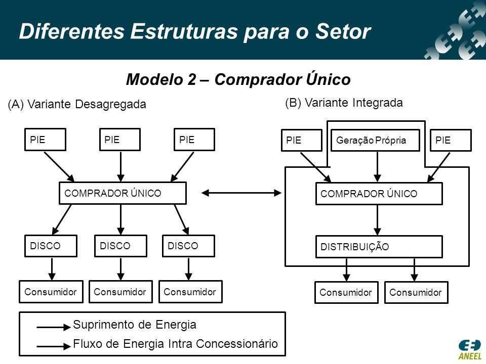 Diferentes Estruturas para o Setor Modelo 3 – Competição no Atacado Consumidor Venda de Energia Consumidor DISCO PIE Grande ConsumidorDISCOGrande Consumidor PIE Rede de Transmissão MERCADO ATACADISTA