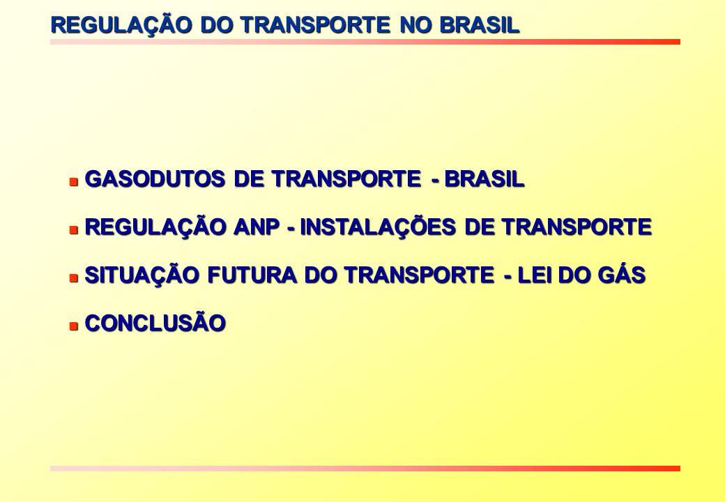 REGULAÇÃO DO TRANSPORTE NO BRASIL GASODUTOS DE TRANSPORTE - BRASIL GASODUTOS DE TRANSPORTE - BRASIL REGULAÇÃO ANP - INSTALAÇÕES DE TRANSPORTE REGULAÇÃ