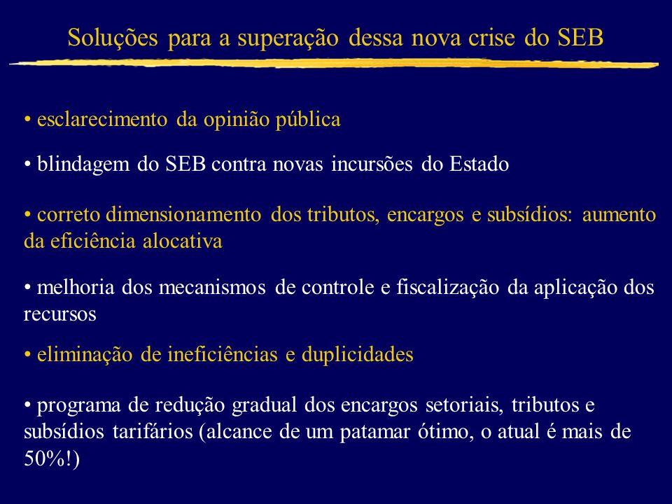 Soluções para a superação dessa nova crise do SEB blindagem do SEB contra novas incursões do Estado correto dimensionamento dos tributos, encargos e s