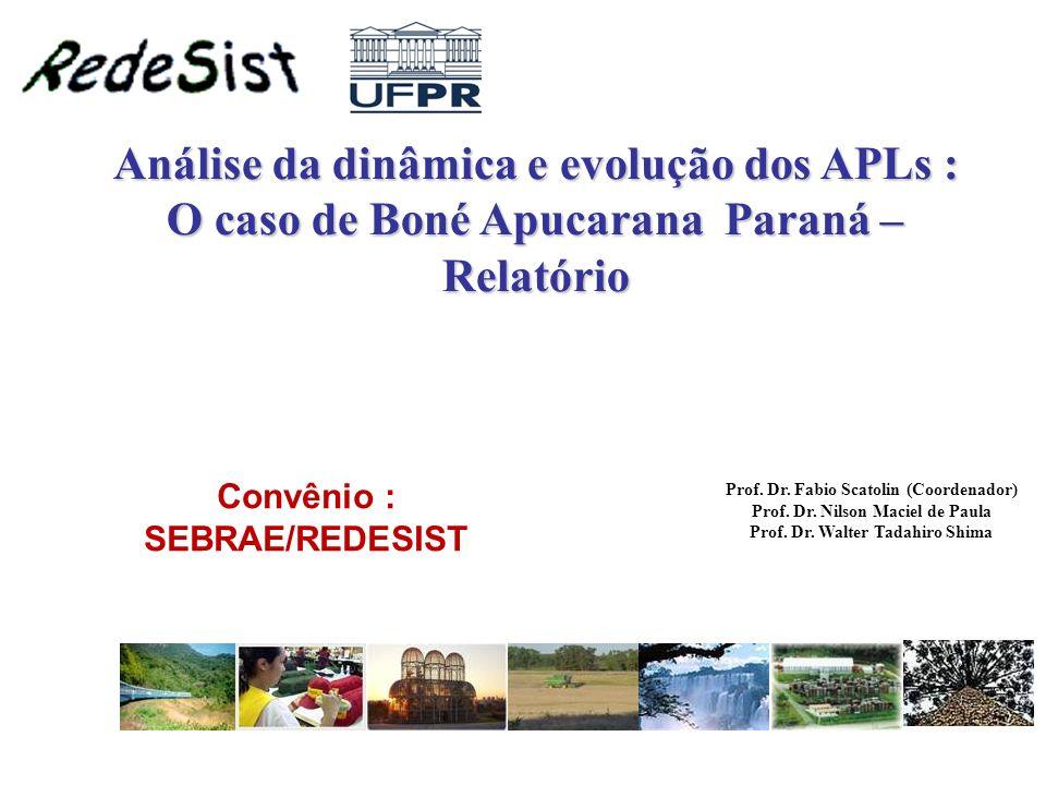 Análise da dinâmica e evolução dos APLs : O caso de Boné Apucarana Paraná – Relatório Prof. Dr. Fabio Scatolin (Coordenador) Prof. Dr. Nilson Maciel d