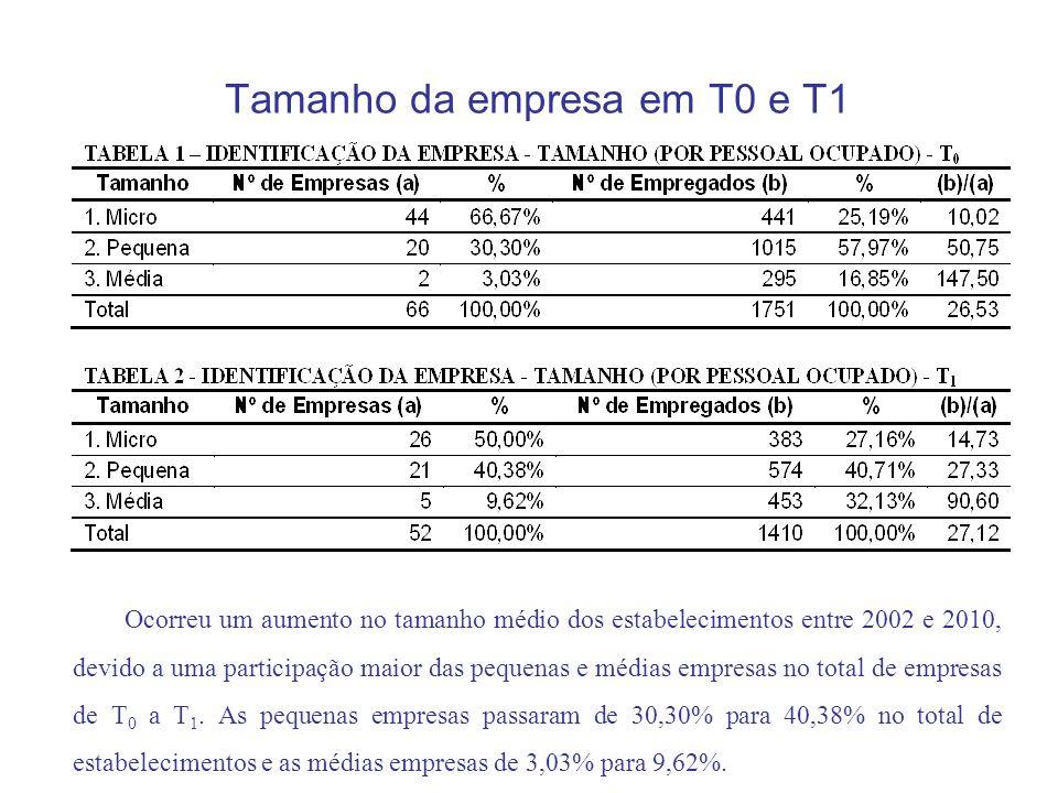 Tamanho da empresa em T0 e T1 Ocorreu um aumento no tamanho médio dos estabelecimentos entre 2002 e 2010, devido a uma participação maior das pequenas