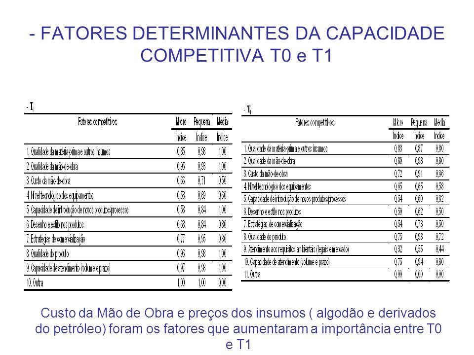 - FATORES DETERMINANTES DA CAPACIDADE COMPETITIVA T0 e T1 Custo da Mão de Obra e preços dos insumos ( algodão e derivados do petróleo) foram os fatore