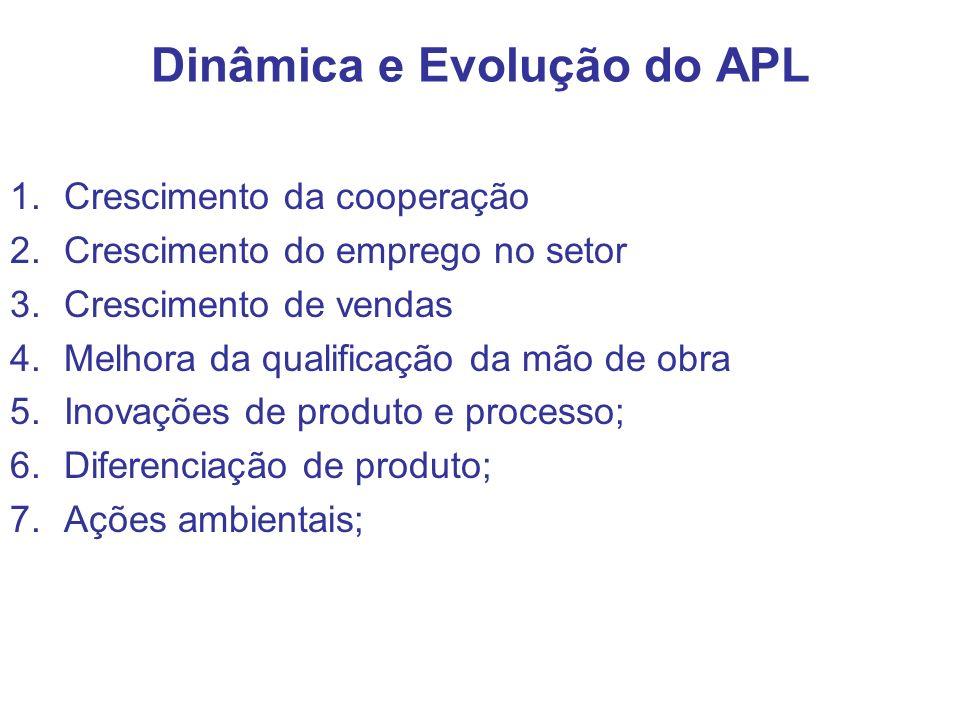 Dinâmica e Evolução do APL 1.Crescimento da cooperação 2.Crescimento do emprego no setor 3.Crescimento de vendas 4.Melhora da qualificação da mão de o