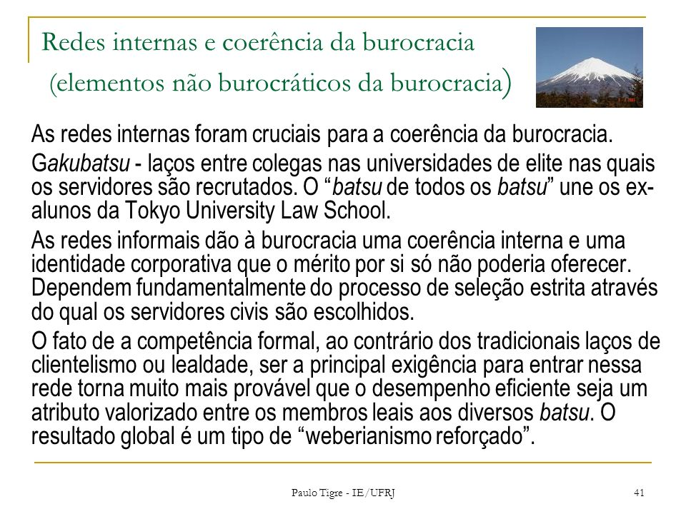 Redes internas e coerência da burocracia (elementos não burocráticos da burocracia ) As redes internas foram cruciais para a coerência da burocracia.
