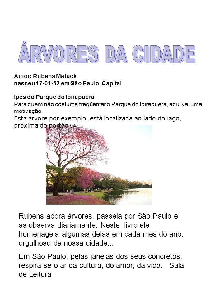 São Paulo é uma cidade Muito movimentada, cheia de moradores e vários lugares Centro Cutural Da Juventude, EMEF Prof. Gilberto Dupas E outras maravilh