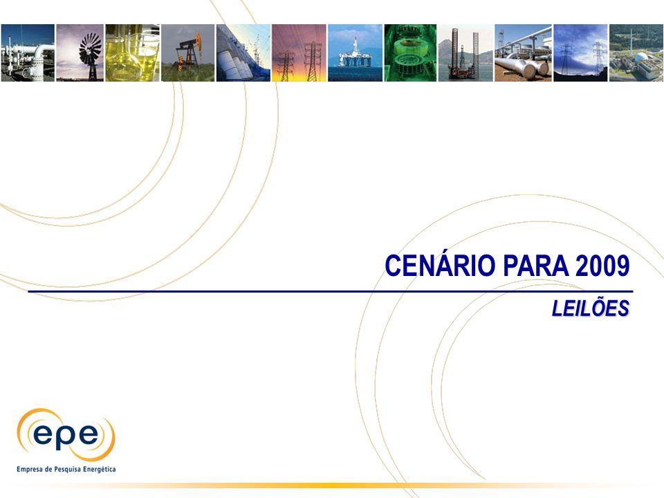 CENÁRIO PARA 2009 LEILÕES