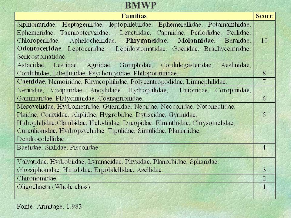 . BMWP