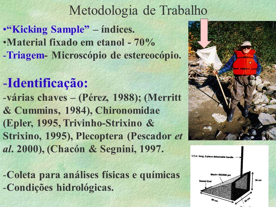 Metodologia de Trabalho Kicking Sample – índices. Material fixado em etanol - 70% -Triagem- Microscópio de estereocópio. -Identificação: -várias chave