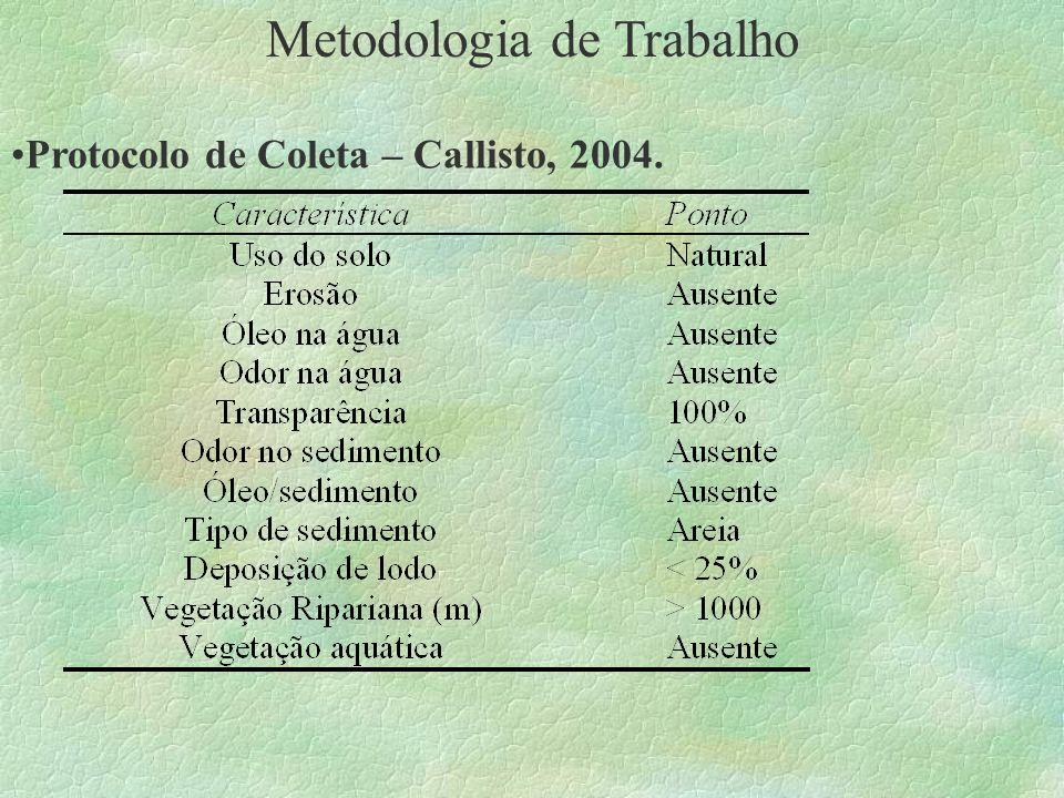 Metodologia de Trabalho Protocolo de Coleta – Callisto, 2004.
