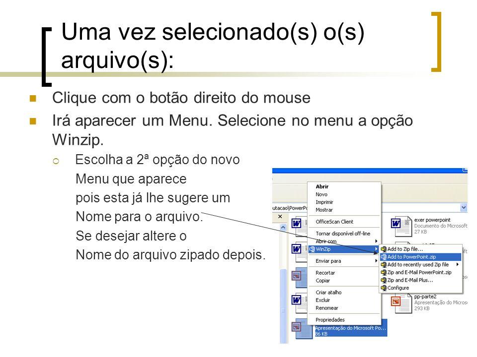 Uma vez selecionado(s) o(s) arquivo(s): Clique com o botão direito do mouse Irá aparecer um Menu.