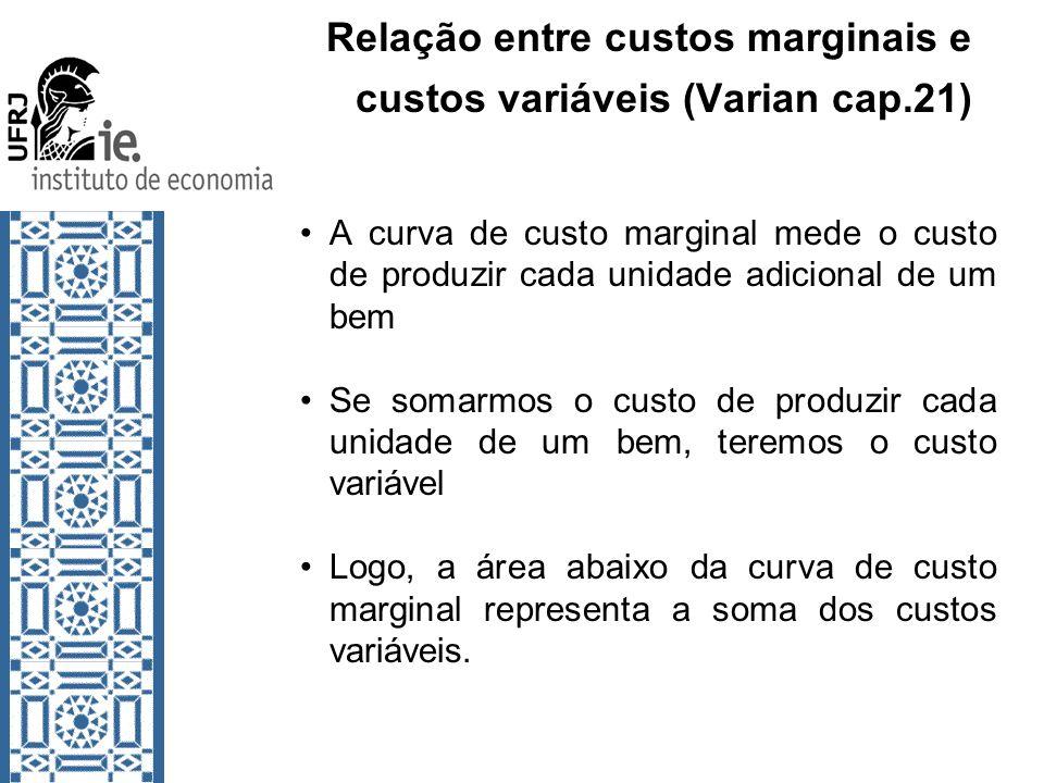 Relação entre custos marginais e custos variáveis (Varian cap.21) A curva de custo marginal mede o custo de produzir cada unidade adicional de um bem