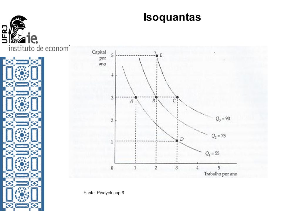 Isoquantas Fonte: Pindyck cap,6