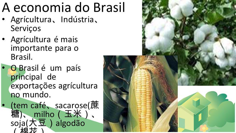 A economia do Brasil Agrícultura Indústria Serviços Agrícultura é mais importante para o Brasil. O Brasil é um país principal de exportações agrícultu