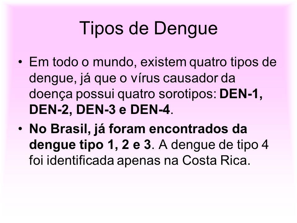 Tipos de Dengue Em todo o mundo, existem quatro tipos de dengue, já que o vírus causador da doença possui quatro sorotipos: DEN-1, DEN-2, DEN-3 e DEN-