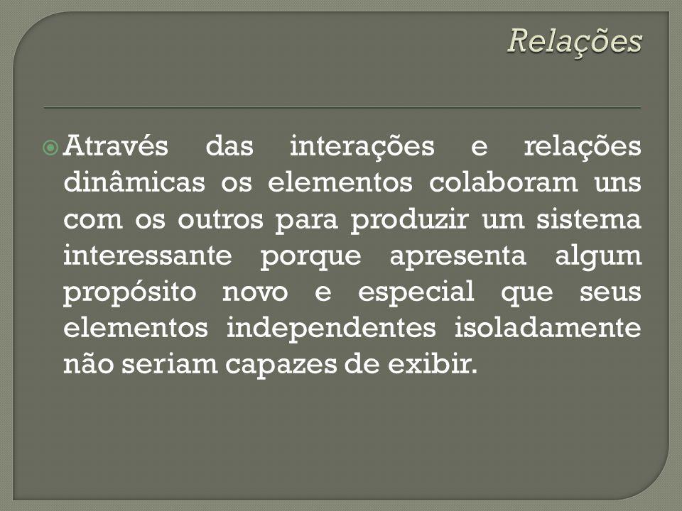 Através das interações e relações dinâmicas os elementos colaboram uns com os outros para produzir um sistema interessante porque apresenta algum prop