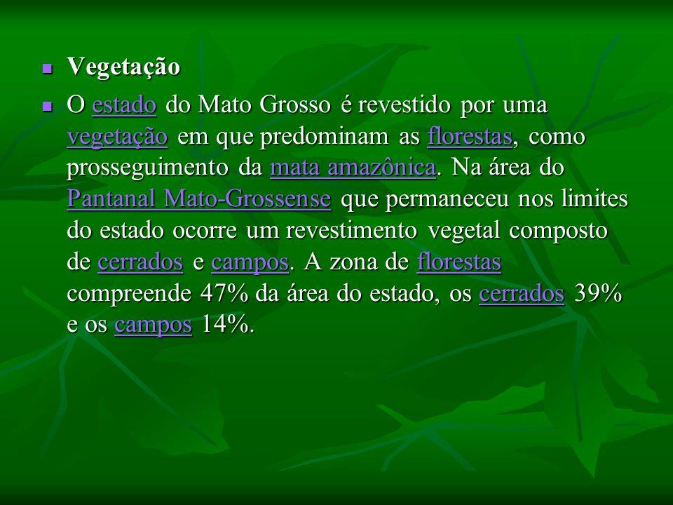 Vegetação Vegetação O estado do Mato Grosso é revestido por uma vegetação em que predominam as florestas, como prosseguimento da mata amazônica. Na ár