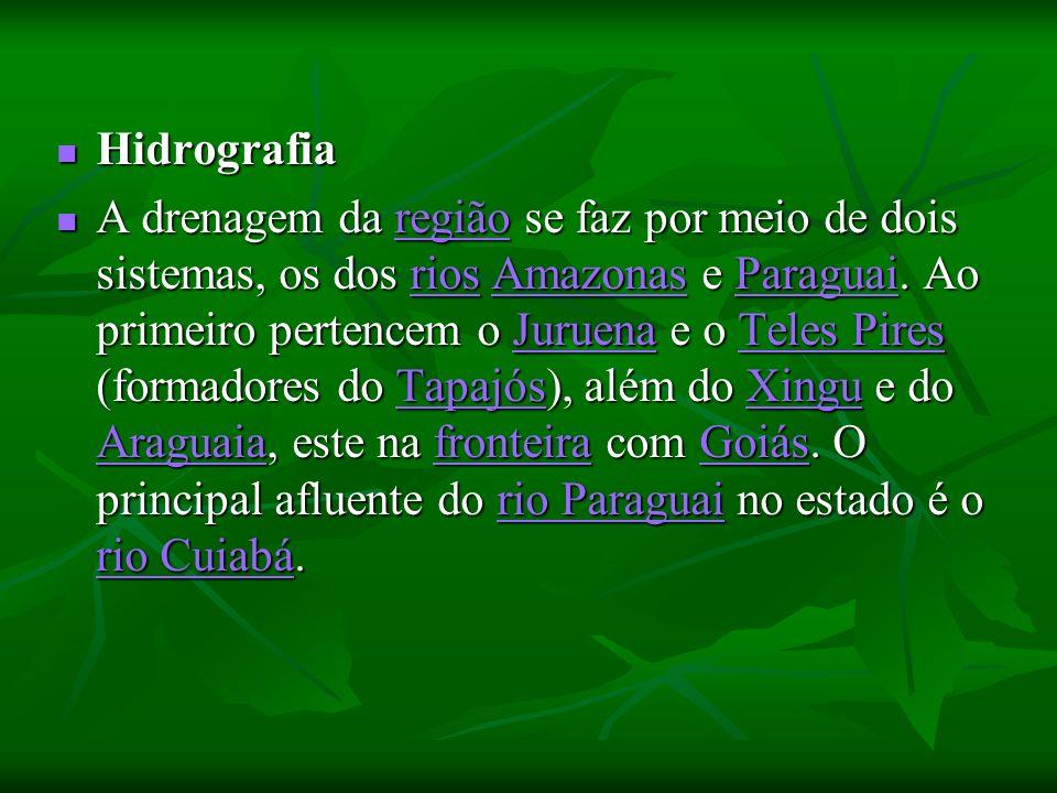 Hidrografia Hidrografia A drenagem da região se faz por meio de dois sistemas, os dos rios Amazonas e Paraguai. Ao primeiro pertencem o Juruena e o Te