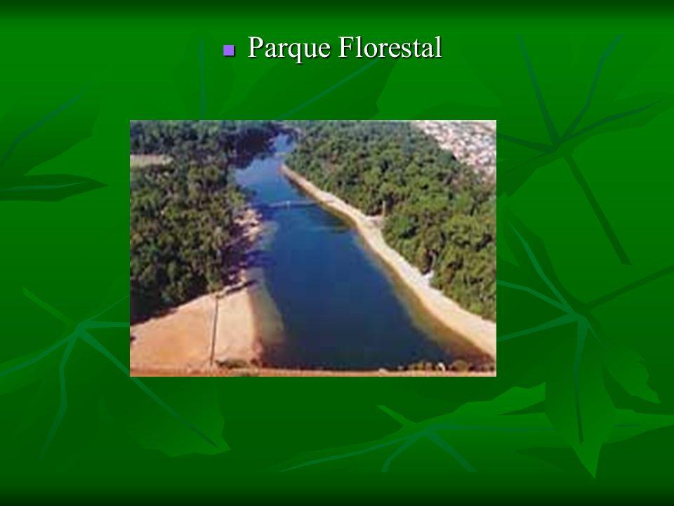 Parque Florestal Parque Florestal