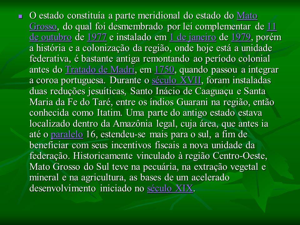 O estado constituía a parte meridional do estado do Mato Grosso, do qual foi desmembrado por lei complementar de 11 de outubro de 1977 e instalado em 1 de janeiro de 1979, porém a história e a colonização da região, onde hoje está a unidade federativa, é bastante antiga remontando ao período colonial antes do Tratado de Madri, em 1750, quando passou a integrar a coroa portuguesa.