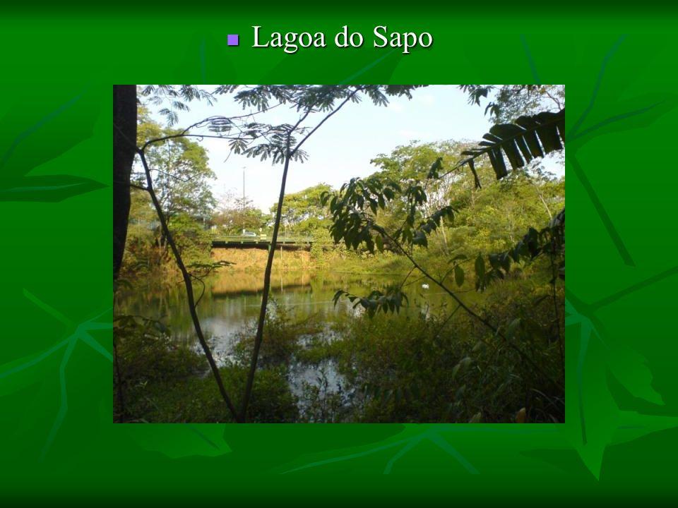 Lagoa do Sapo Lagoa do Sapo