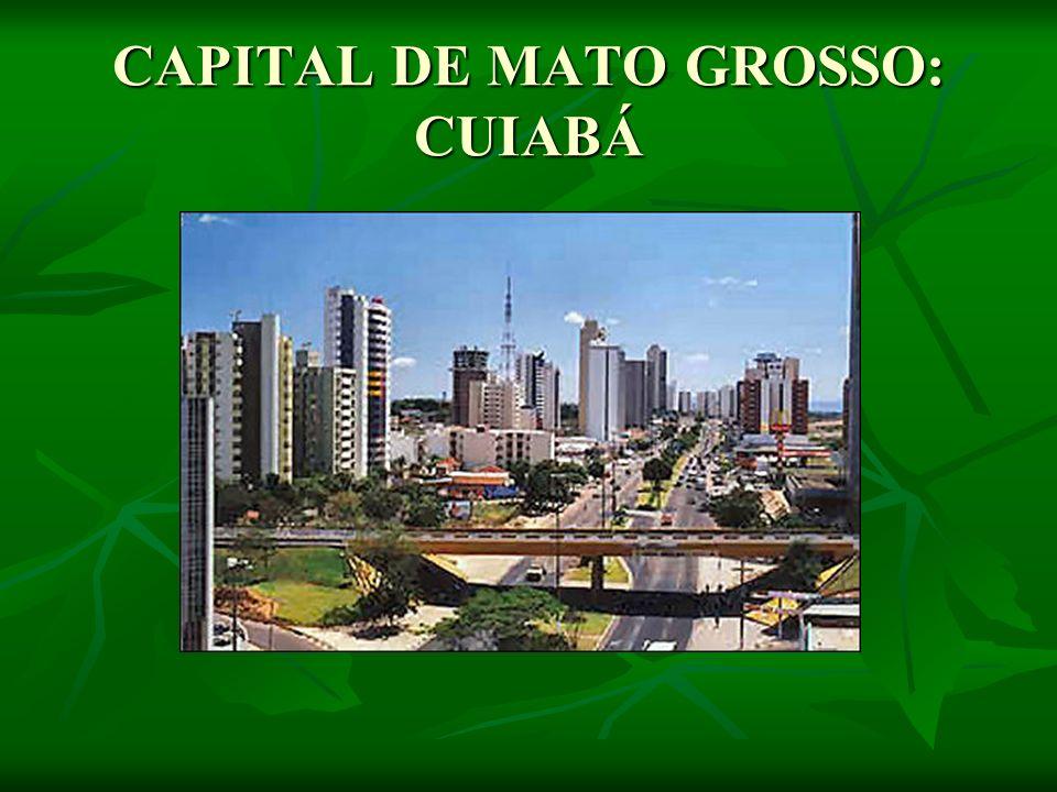 CAPITAL DE MATO GROSSO: CUIABÁ