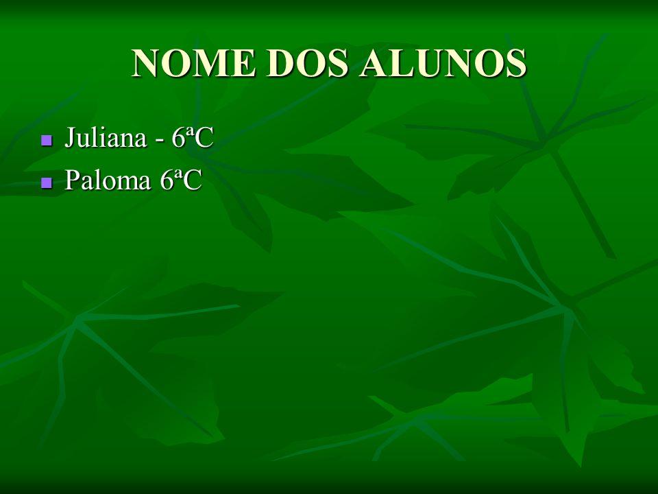 NOME DOS ALUNOS Juliana - 6ªC Juliana - 6ªC Paloma 6ªC Paloma 6ªC