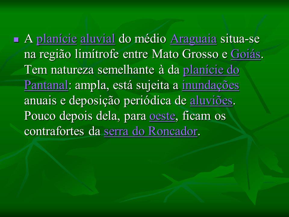 A planície aluvial do médio Araguaia situa-se na região limítrofe entre Mato Grosso e Goiás. Tem natureza semelhante à da planície do Pantanal: ampla,