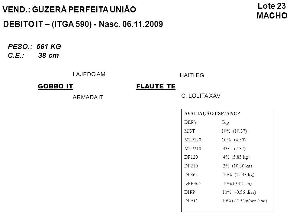 Lote 23 MACHO VEND.: GUZERÁ PERFEITA UNIÃO DEBITO IT – (ITGA 590) - Nasc. 06.11.2009 GOBBO IT LAJEDO AM ARMADA IT FLAUTE TE HAITI EG C. LOLITA XAV PES