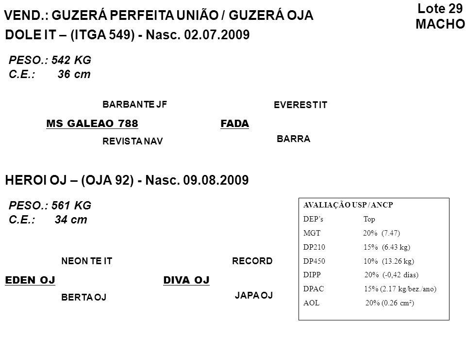 Lote 29 MACHO VEND.: GUZERÁ PERFEITA UNIÃO / GUZERÁ OJA AVALIAÇÃO USP / ANCP DEPs Top MGT 20% (7.47) DP210 15% (6.43 kg) DP450 10% (13.26 kg) DIPP 20%