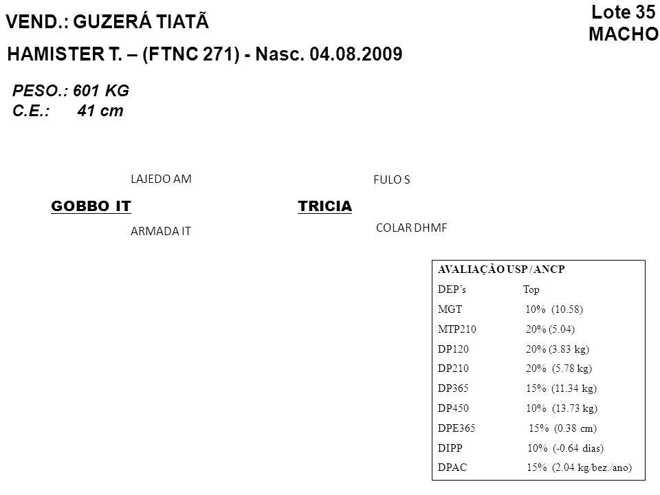 VEND.: GUZERÁ TIATÃ HAMISTER T. – (FTNC 271) - Nasc. 04.08.2009 AVALIAÇÃO USP / ANCP DEPs Top MGT 10% (10.58) MTP210 20% (5.04) DP120 20% (3.83 kg) DP