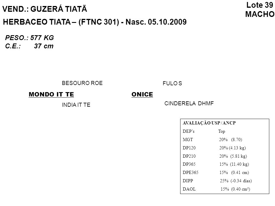 VEND.: GUZERÁ TIATÃ HERBACEO TIATA – (FTNC 301) - Nasc. 05.10.2009 MONDO IT TE BESOURO ROE INDIA IT TE ONICE FULO S CINDERELA DHMF AVALIAÇÃO USP / ANC