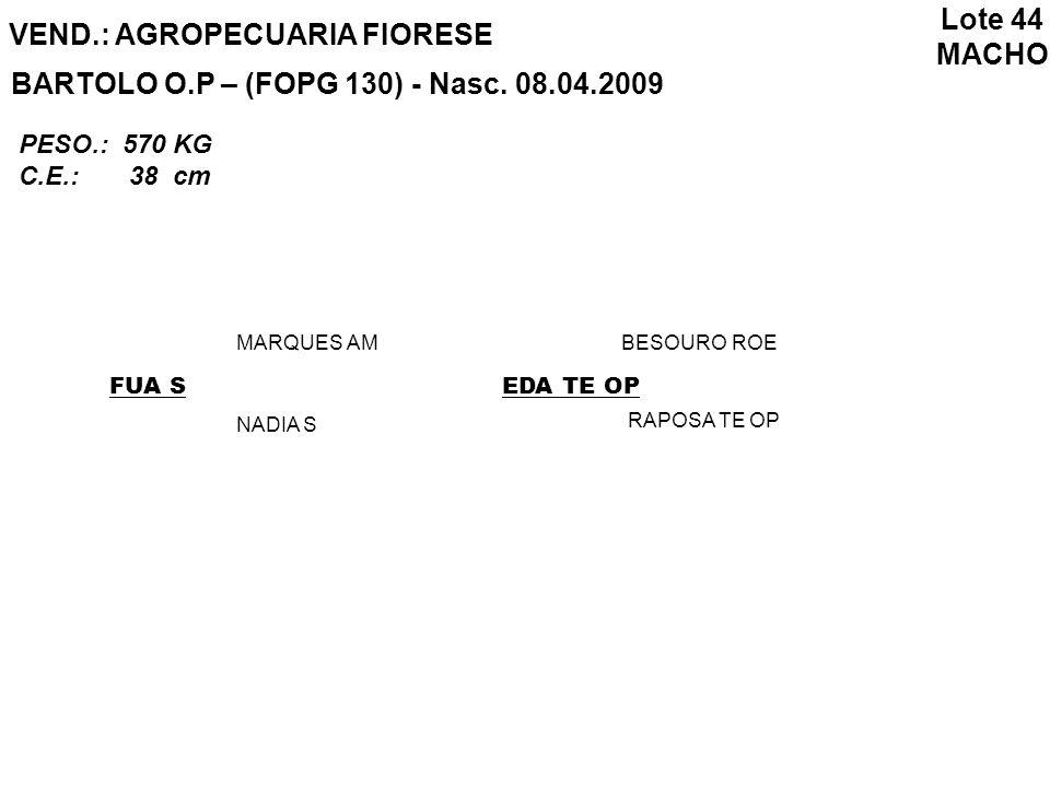VEND.: AGROPECUARIA FIORESE BARTOLO O.P – (FOPG 130) - Nasc. 08.04.2009 FUA S MARQUES AM NADIA S EDA TE OP BESOURO ROE RAPOSA TE OP Lote 44 MACHO PESO