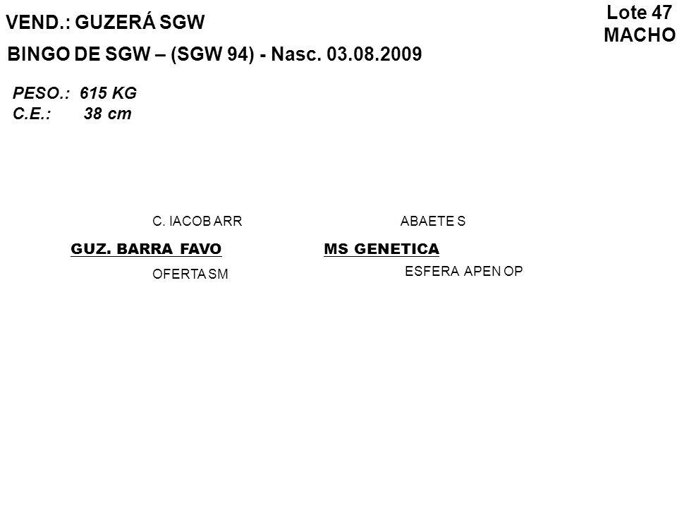 VEND.: GUZERÁ SGW BINGO DE SGW – (SGW 94) - Nasc. 03.08.2009 GUZ. BARRA FAVO C. IACOB ARR OFERTA SM MS GENETICA ABAETE S ESFERA APEN OP Lote 47 MACHO