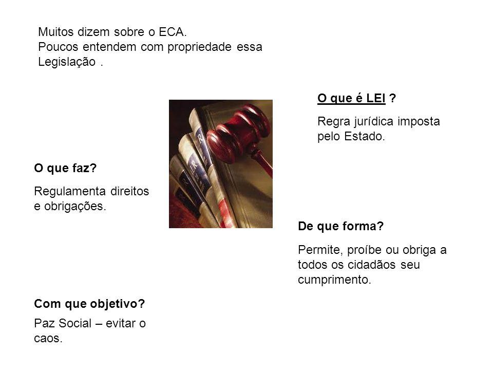 Muitos dizem sobre o ECA. Poucos entendem com propriedade essa Legislação. O que é LEI ? Regra jurídica imposta pelo Estado. O que faz? Regulamenta di