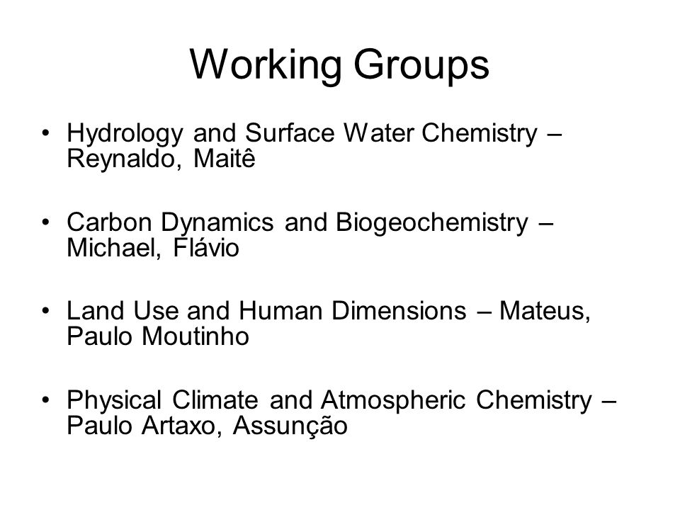 Working Groups Hydrology and Surface Water Chemistry – Reynaldo, Maitê Carbon Dynamics and Biogeochemistry – Michael, Flávio Land Use and Human Dimensions – Mateus, Paulo Moutinho Physical Climate and Atmospheric Chemistry – Paulo Artaxo, Assunção
